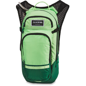 Dakine Session 12l Backpack Men, summer green/fir